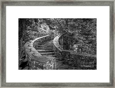 Eastern University Stone Stairway Detail Framed Print