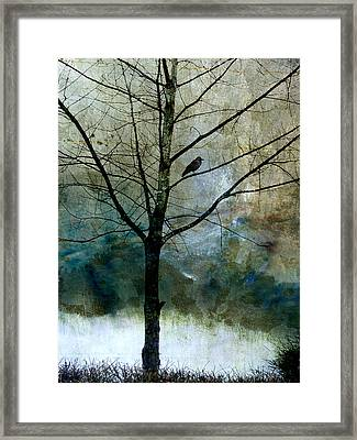 Eastward Framed Print by Carol Leigh