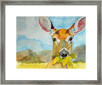 Eat Your Greens Framed Print by Kris Dixon