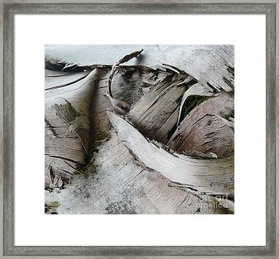 Ebb And Flow Framed Print by Donna McLarty