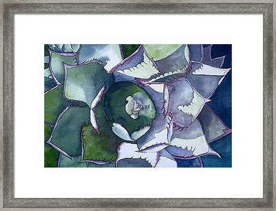 Echeveria Framed Print by Eunice Olson
