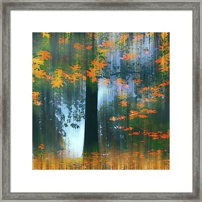 Framed Print featuring the photograph Echoes Of Autumn by Jessica Jenney