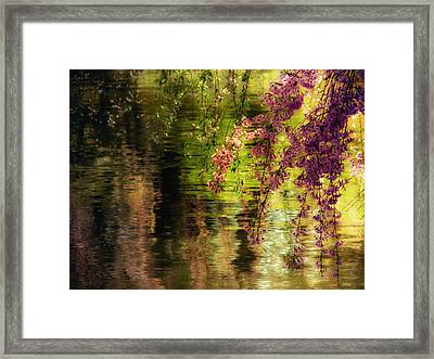 Echoes Of Monet - Cherry Blossoms Over A Pond - Brooklyn Botanic Garden Framed Print by Vivienne Gucwa