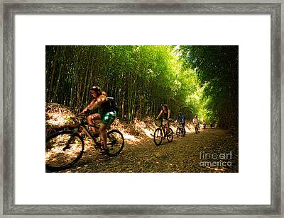 Eco-tourism Framed Print by Gaspar Avila