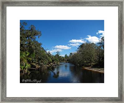 Framed Print featuring the photograph Econlockhatchee River by Barbara Bowen