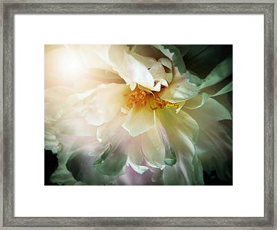 Ecstasy Framed Print by Shirley Sirois
