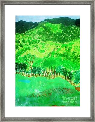 Ecuador Countryside Framed Print