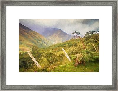 Ecuadorian Mountain Forest Framed Print