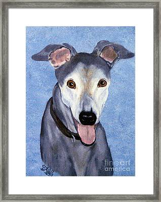 Framed Print featuring the painting Eddie - Greyhound by Terri Mills