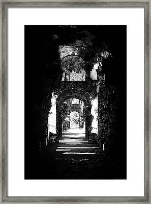 Eden Window Framed Print by Lucas Mazzeo