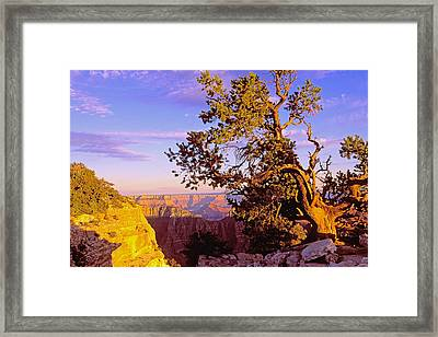 Edge Of Canyon Framed Print by Alan Lenk