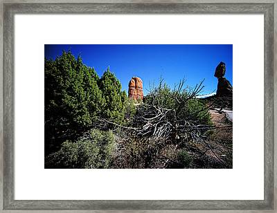 Edge Of Life Arches Framed Print by Lawrence Christopher