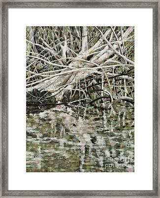 Edge Of Smith Lake Framed Print