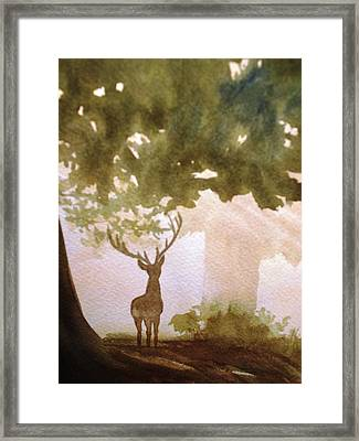 Edge Of The Forrest Framed Print by Marilyn Jacobson