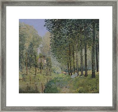 Edge Of The Wood Framed Print by Alfred Sisley