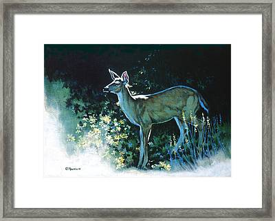 Edge Of The Wood Framed Print by Richard De Wolfe
