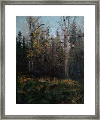 Edge Of The Woods #1 Framed Print by Brian Kardell