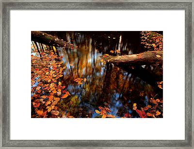 Edge Of Wishes Framed Print by Mike Eingle