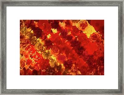 Edgy Flowers Through Glass Framed Print