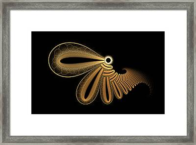 Edisc Bliss Framed Print