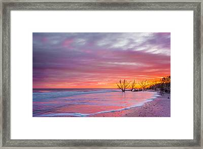 Edisto Beach Sunset Framed Print by RC Pics