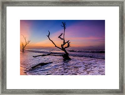 Edisto Dawan Framed Print by RC Pics