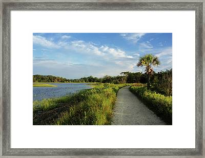 Framed Print featuring the photograph Edisto by Jessica Brawley