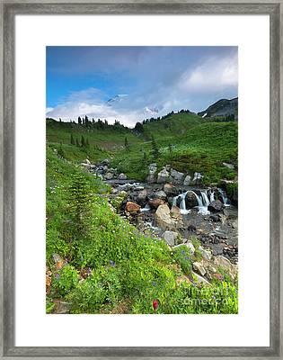 Edith Creek Mountain View Framed Print by Mike Dawson