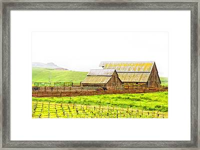 Edna Valley Ranch Framed Print by Patricia Stalter