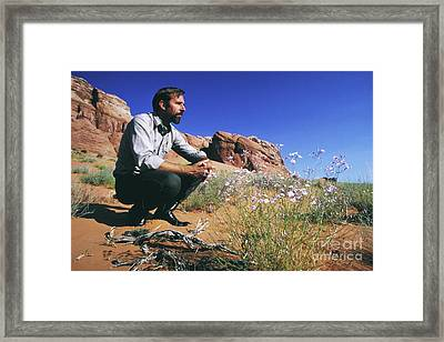 Edward Abbey, Author Of Desert Solitaire, Shown Here In The Dese Framed Print