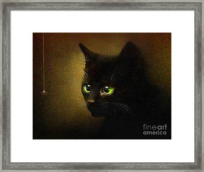 Eensy Weensy Framed Print by Robert Foster