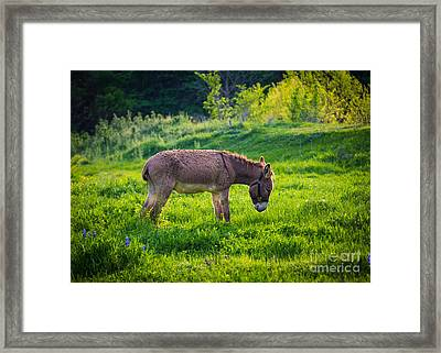 Eeyore's Gloomy Place Framed Print by Inge Johnsson