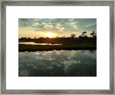 Effect Framed Print by Claire Almand