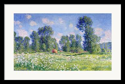 Field Of Crops Framed Prints