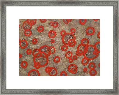 Effervescent Framed Print by Jacob Stempky