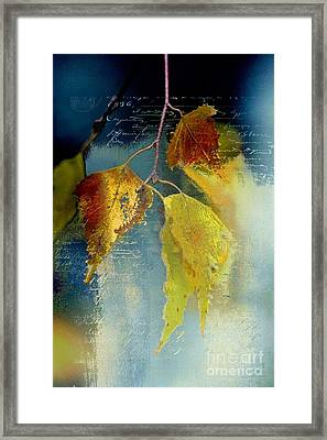 Effeuillantine - J103158202-02 Framed Print by Variance Collections