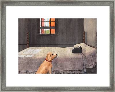 Effing Cat Framed Print by Catherine G McElroy