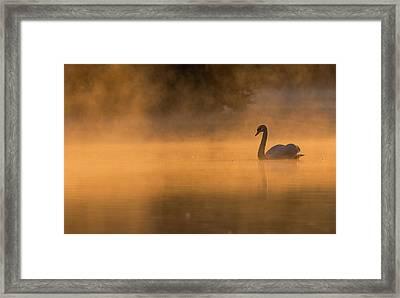 Effulgent Stratford Morning Air Framed Print