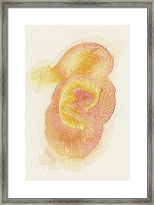 Egg - #ss16dw015 Framed Print by Satomi Sugimoto