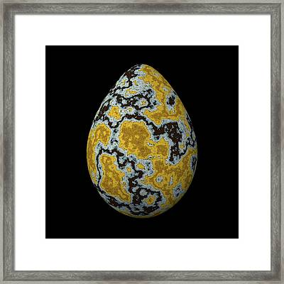 Egg With Yellow Lichen Framed Print by Hakon Soreide