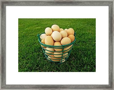 Eggs In A Basket Framed Print