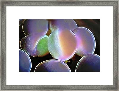 Eggs In A Fractal Mood Framed Print