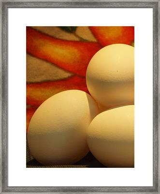 Eggs Tres Framed Print by Irma BACKELANT GALLERIES