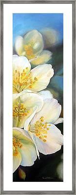 Eglantine Framed Print by Muriel Dolemieux