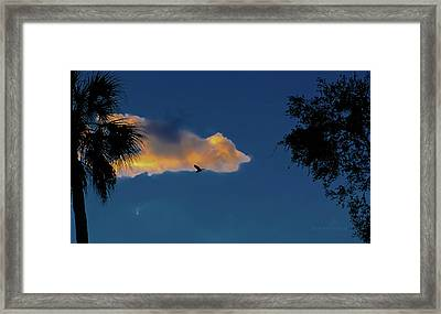 Egressing Egret Framed Print by DigiArt Diaries by Vicky B Fuller