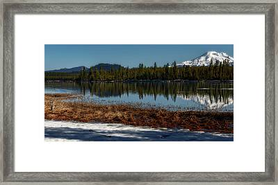 Framed Print featuring the photograph Egret At Lava Lake by Cat Connor