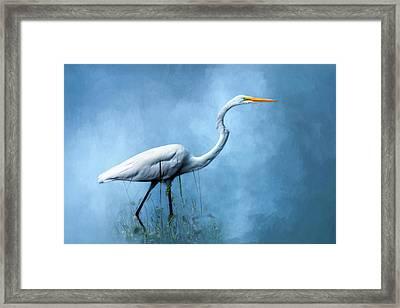 Egret Framed Print by Cyndy Doty