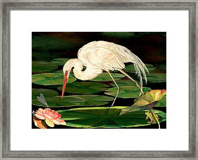 Egret Fishing In Lily Pads Framed Print by Anne Beverley-Stamps
