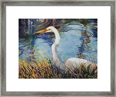 Egret In Cameron Marsh Framed Print by Sue Zimmermann