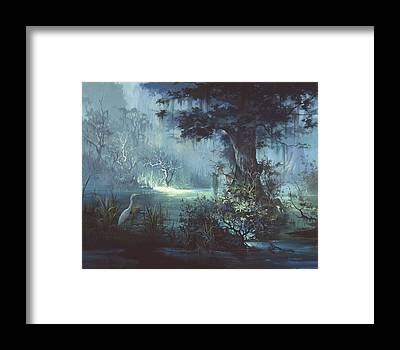 Florida Swamp Framed Prints